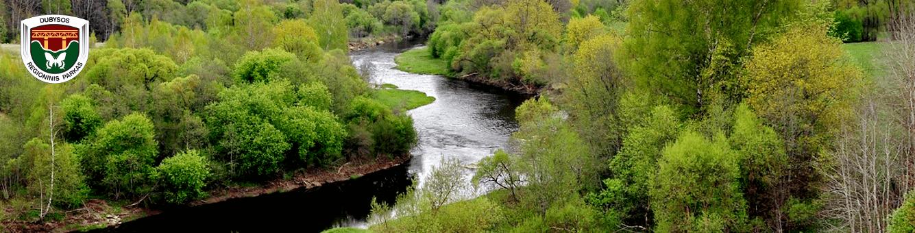 Dubysos regioninis parkas